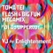 TOWA TEI FLASH & BIG FUN MEGAMIX<BR> #01 BY DJ UPPERCUT VJ by Enlightenment