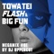 TOWA TEI FLASH & BIG FUN MEGAMIX<BR> #01 BY DJ UPPERCUT